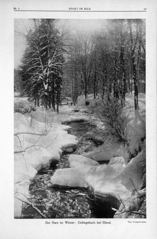 Der Harz im Winter bei Elend 1914