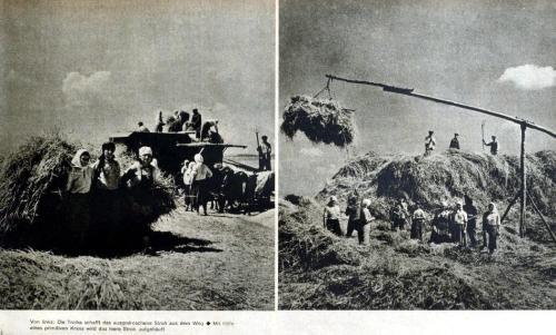 Getreiderente in der Ukraine 1943
