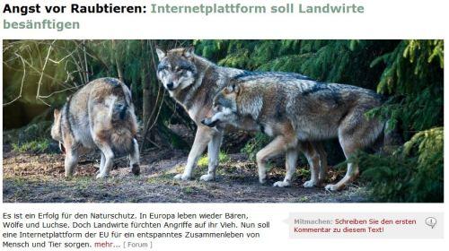 Auch Wölfe surfen im Internet